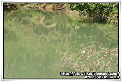 大欖涌水塘休憩處
