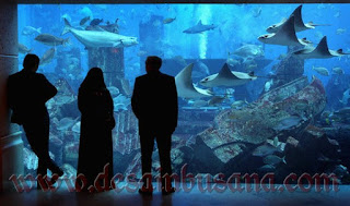 aquarium raksasa di Atlantis