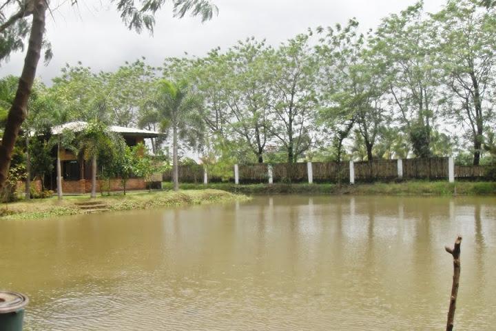 Champ's Aqua Farm