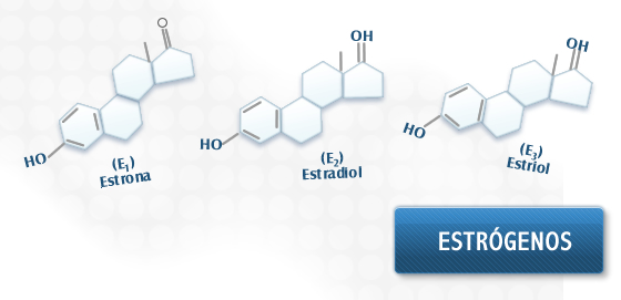 biosintesis de esteroides adrenales