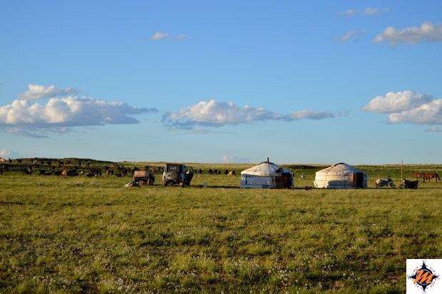 Gher di nomadi tornando verso l'Erdene Ukhaa Tourist Camp