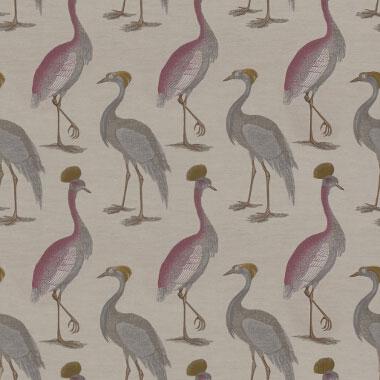 Aesthetic oiseau gaston y daniela - Gaston y daniela cortinas ...