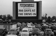 About 366 Days at the Drive-In