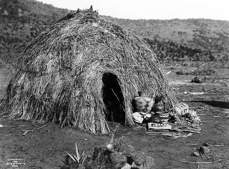 Wood Trekker: Apache Wickiup, 1903