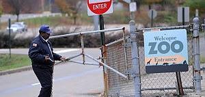Pittsburgh: bambino sbranato dai licaoni in uno zoo