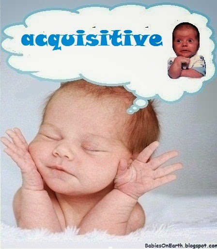 acquisitive