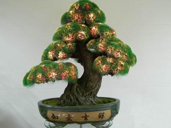 Free amazing images 36 bonsai trees and tropical plants for Different kinds of bonsai trees