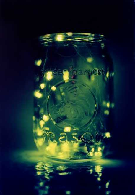 Green Barnhouse Art Girlie Girl Catch Fireflies In A Mason Jar