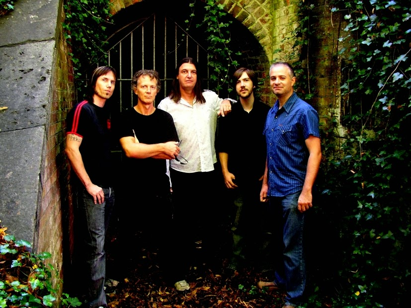 newman - band