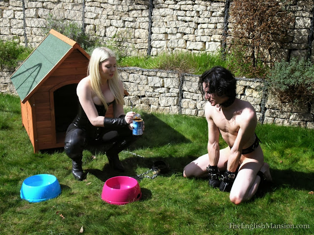 female domination pet puppy training slave