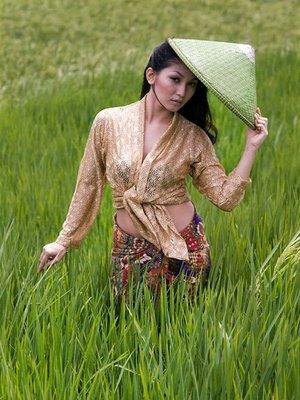 gadis desa gadisku senyummu padi menguning matamu padang rumput ...