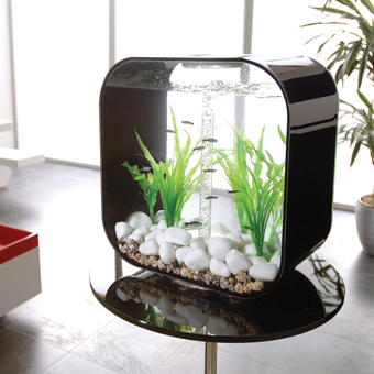 Co9 biorb life collection fish tanks for Contemporary fish tank