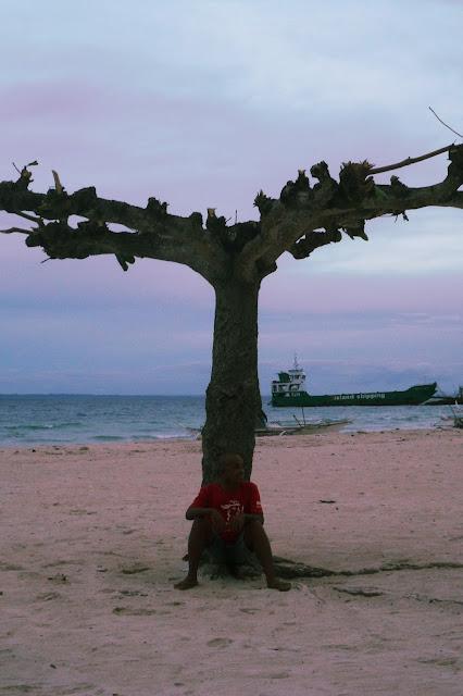 under the treehouse-ish tree