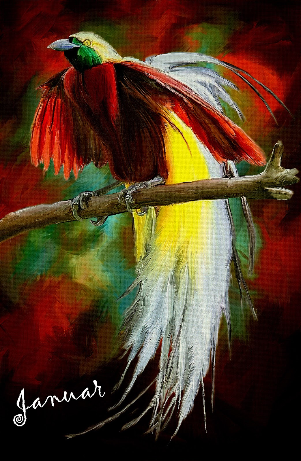 Cendrawasih on Oil Painting,Burung Cendrawasih, Cendrawasih Bird