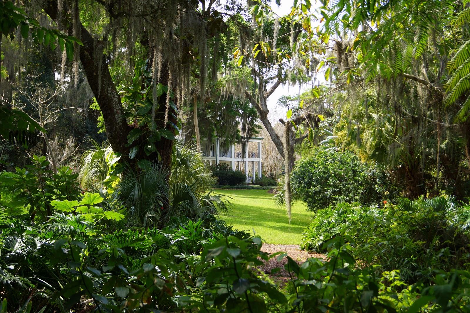 Dancing 39 Cross The Country A Botanical Blog Leu Gardens In Orlando Fl
