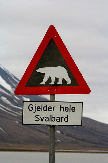 Polar bear warning sign in Svalbard, © Amanda Graham