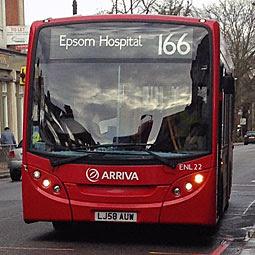 darwin bus timetable