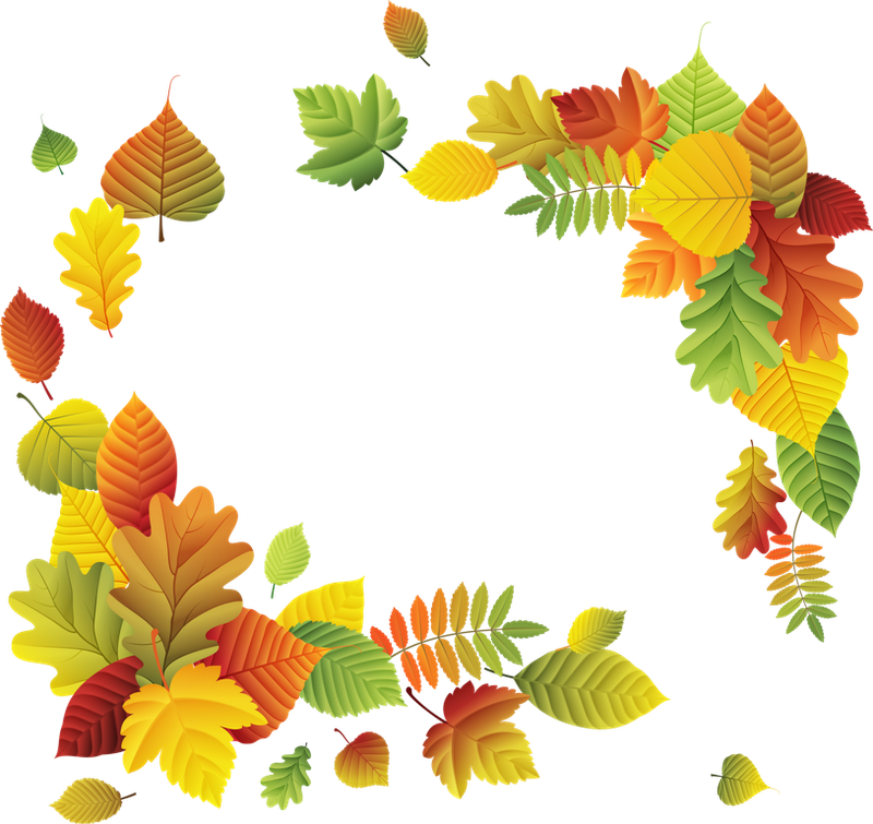 Рамки из осенних листьев фото