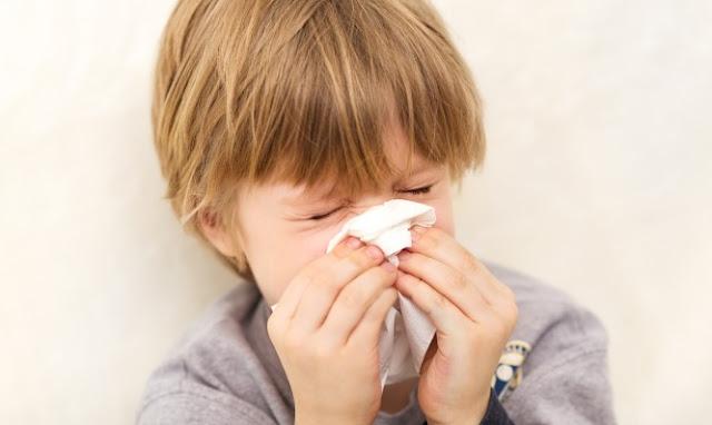 Mengobati Penyakit Sinusitis dengan Cara Tradisional dan Alami