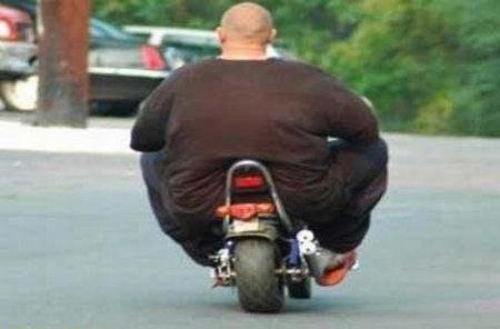 """Képtalálat a következőre: """"fat people"""""""