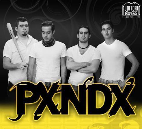 el grupo musical panda:
