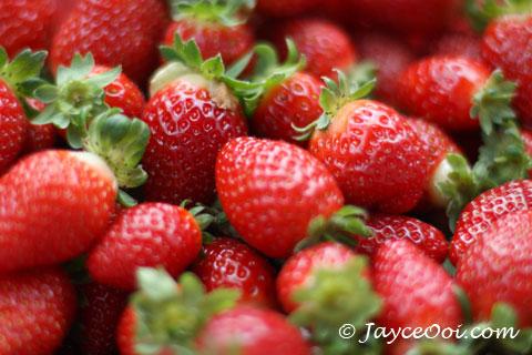 http://1.bp.blogspot.com/-D3ITo_ASqvg/Td8cG3NibVI/AAAAAAAAAB8/Oip9Wv80-UI/s1600/strawberry.jpg