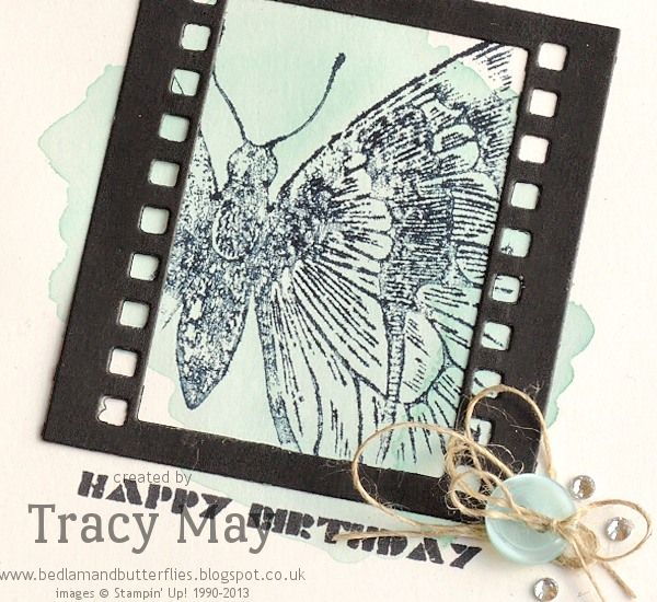 Stampin Up Swallowtail On Film Framelits Tracy May