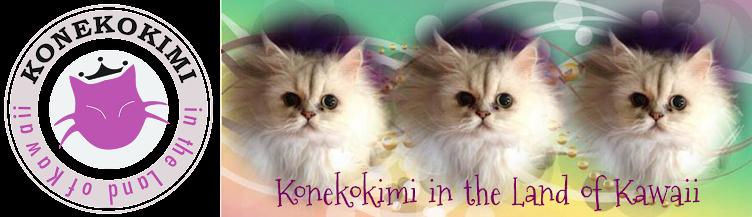 Konekokimi in the Land of Kawaii
