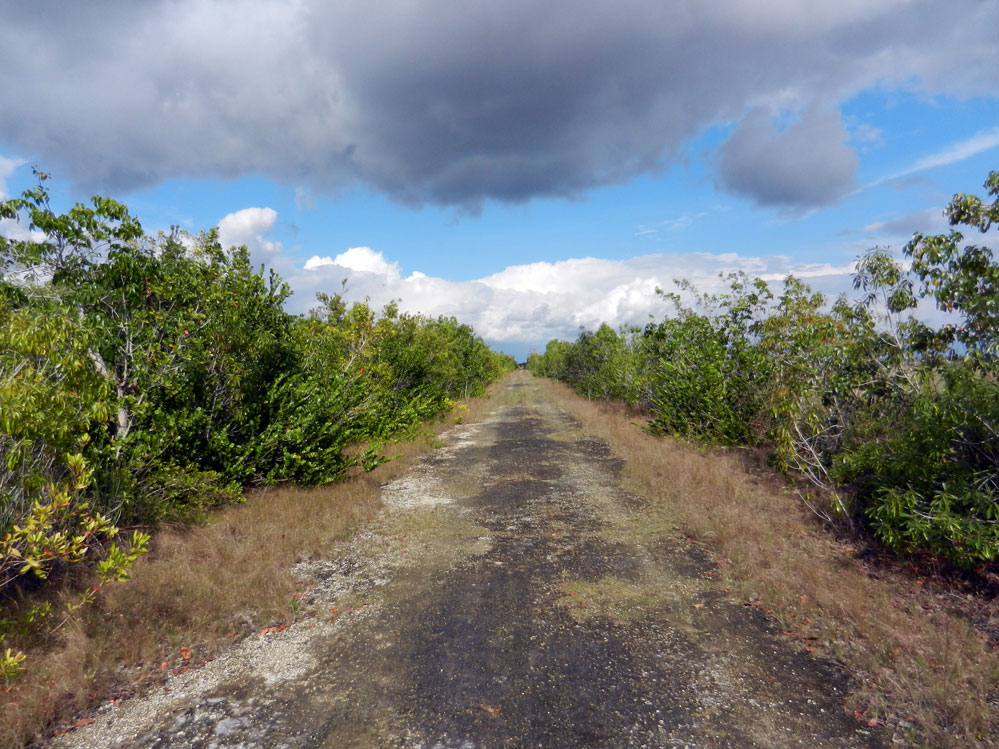 RoyalEnfields.com: Forgotten Florida road might remember ...