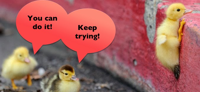 questions peer pressure esl educate school learn 20 questions peer pressure positive cute ducks jumping encouragement