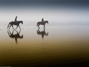 Two Equestrian Riders by Mike Baird