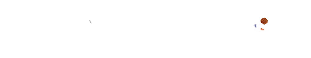 Rolling Falafel