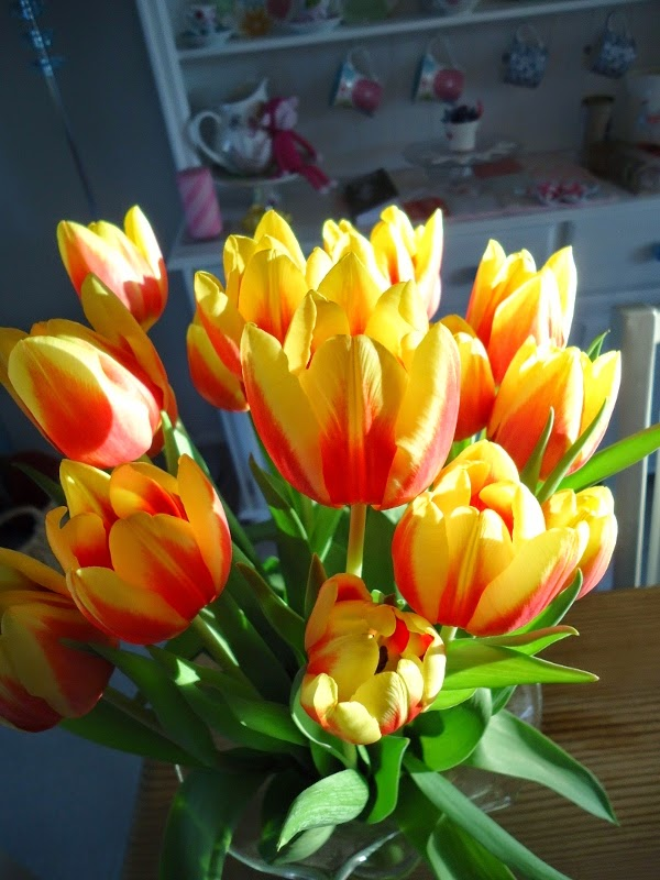 Tulips: Dinki Dots