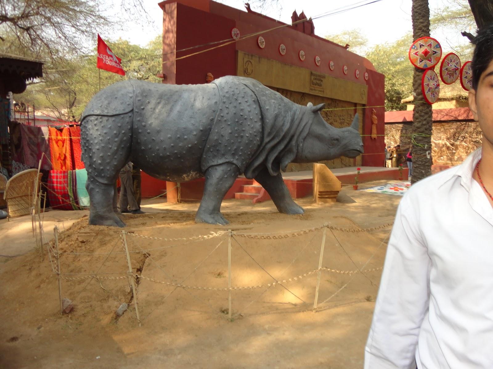 Rhinoceros found in Kaziranga Assam,India