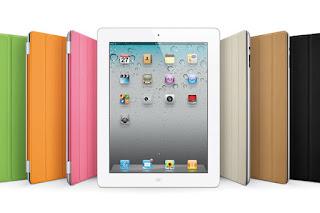 iPad mini LCD panel