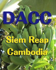 DACCホームページ