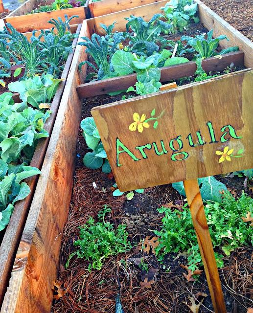 Promise of Peace Community Garden