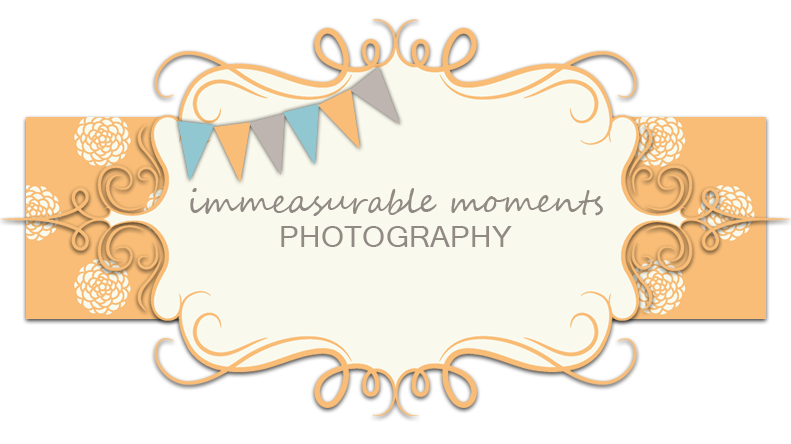 Immeasurable Moments Photography
