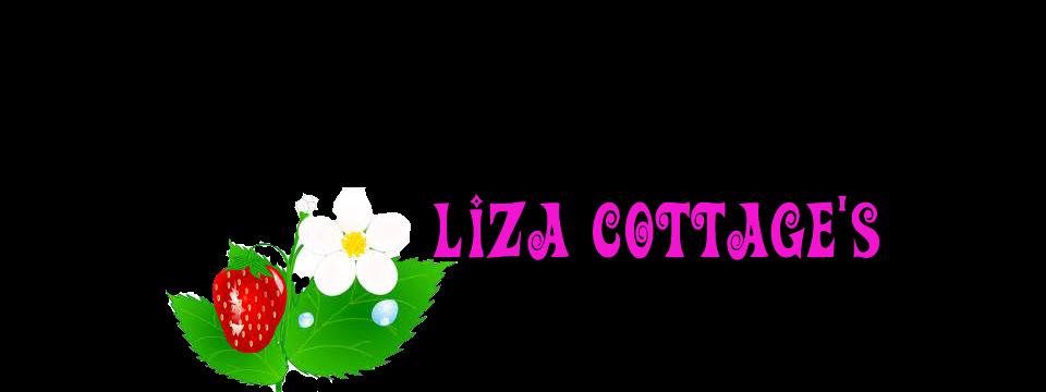 lIZ's DecOupaGe
