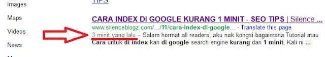 CARA INDEX DI GOOGLE KURANG 1 MINIT - SEO TIPS