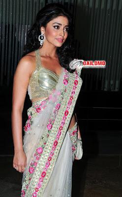 Shriya Saran Sexy