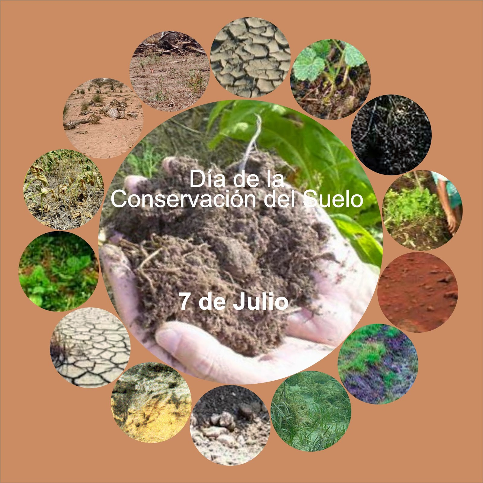 V e r d e c h a c o 7 de julio d a de la conservaci n for 5 cuidados del suelo