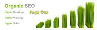 tips mengoptimalkan seo organic