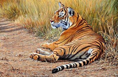 Tigre Salvaje Al Oleo