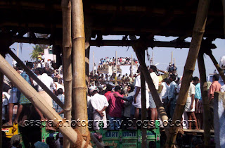 Spectators at the Jallikatttu