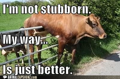 stubborn+cow blog of author michelle mclean silly saturday