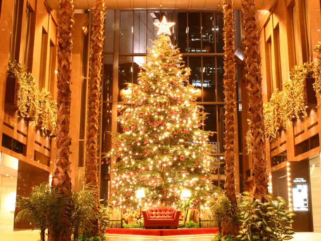 lenaquestaosocial: christmas tree desktop background