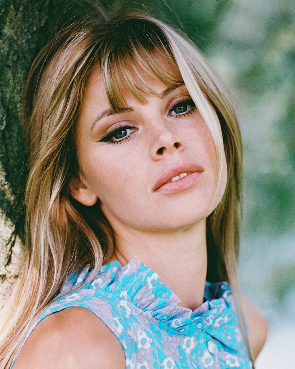 A Slice Of Cheesecake Britt Ekland