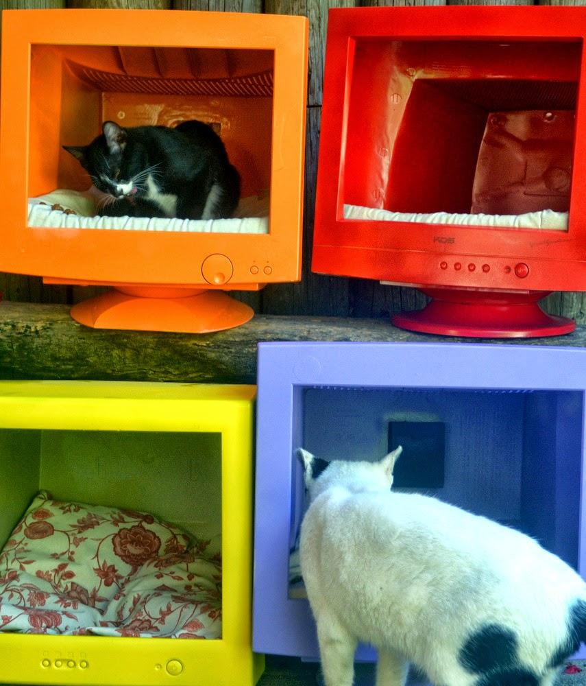 Pet home - Cuccia per gatti ikea ...