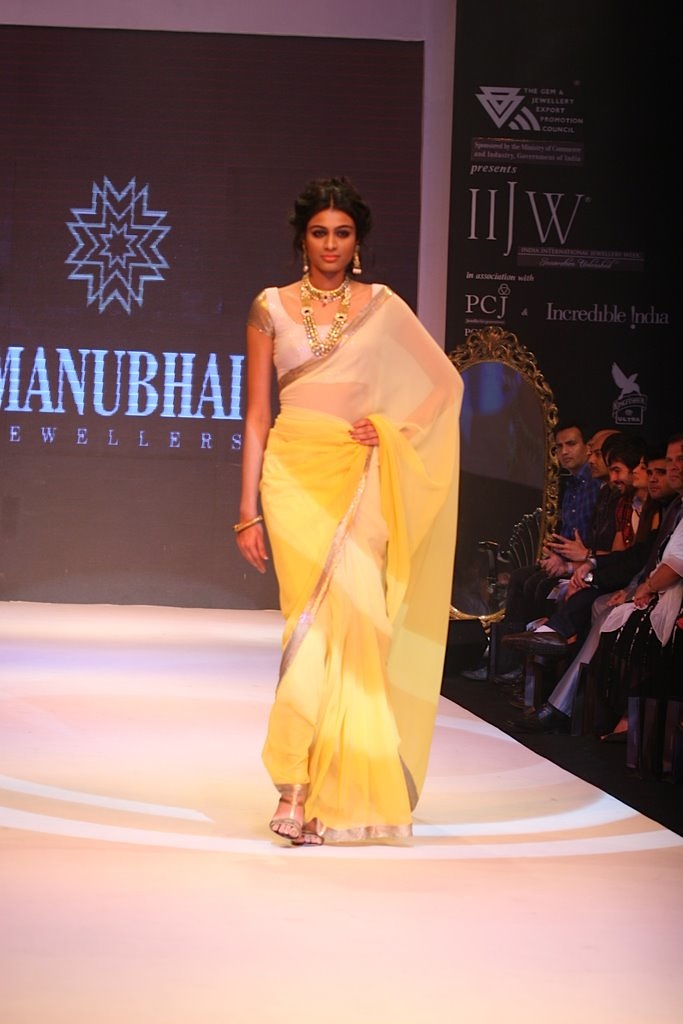 Bidita Bag Ramp Walk Pics IIJW